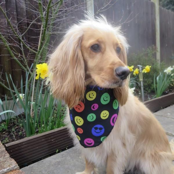 Smiley Face Dog Bandana Emotion Design Dog Bandanas