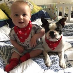 Dexter and Cooper