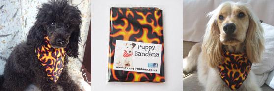 flamin'hot dog bandana