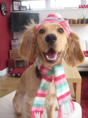 Ellie in hat and scarf