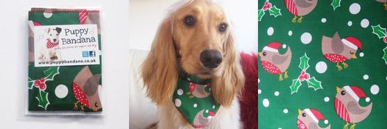 Christmas Robin Dog Bandanas