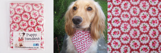 Cath Kidston Style Dog Bandanas