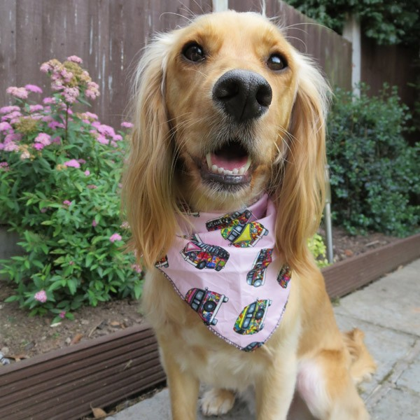 Pink Campervans Dog Bandana