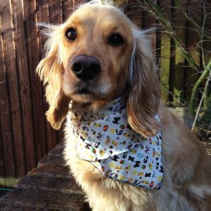 Cats and Dogs Dog Bandana
