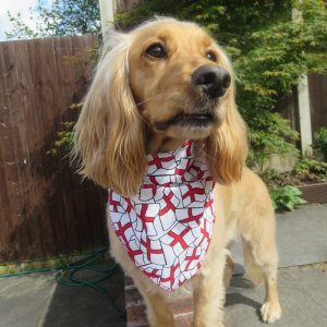 England Flags Dog Bandana