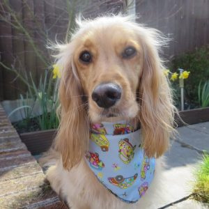 Groovy VW Beetles Dog Bandana
