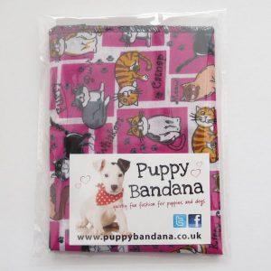 Kitty Cat Pink Dog Bandana