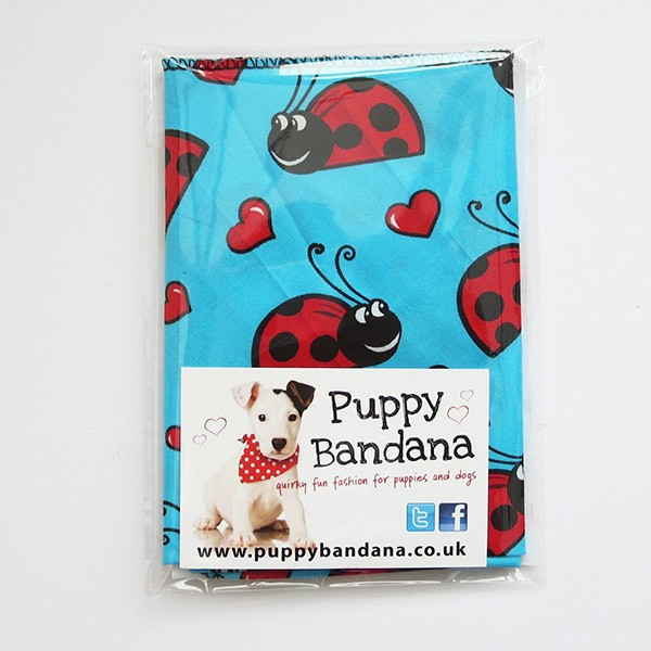 Ladybird Lovebugs Dog Bandana in Turquoise