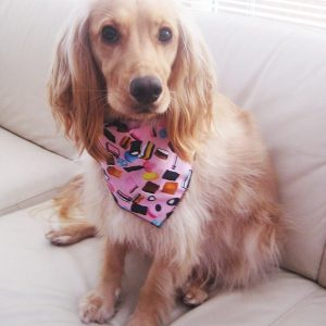 Pink Liquorice Allsorts Dog Bandana