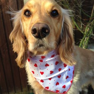 Love Hearts Valentines Dog Bandana