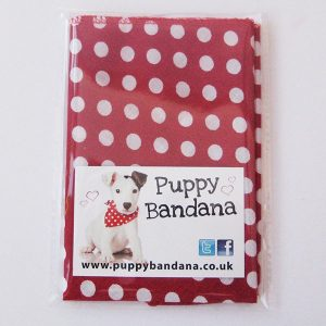 Red Spotty Dog Bandana