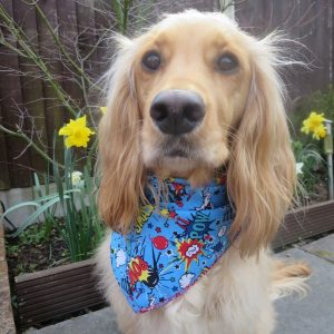 Super Hero Dog Bandana