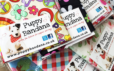 Special offers dog bandanas
