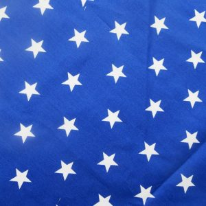 Dog Bandana in Blue Stars