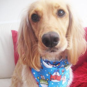 Frosty The Snowman Dog Bandana