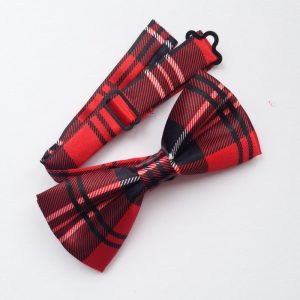 Large Red Checked Bowtie for dogs