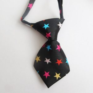 Starry Tie for Dogs