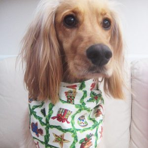 Twelve Days of Christmas Dog Bandana