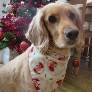 Waving Santa Claus Dog Bandana