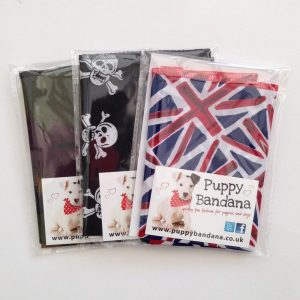 Pack of 3 Bandanas for Boys