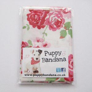 pack of 2 cath kidston style dog bandanas
