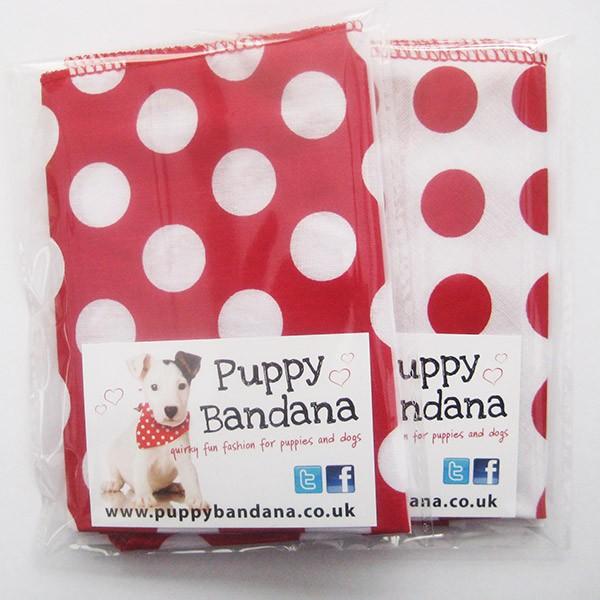 Polka Dot Twin Pack Dog Bandanas