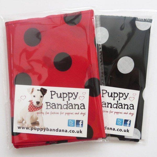 Spotty Twin Pack Dog Bandanas
