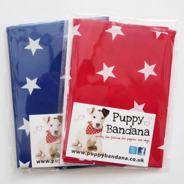Stars Dog Bandana Twin Pack