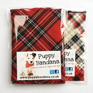 Tartan Dog Bandana Twin Pack from Puppy Bandana