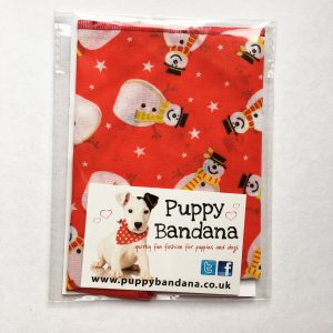 The Smiley Snowman Dog Bandana in Red
