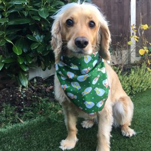 The Smiley Snowman Green Dog Bandana