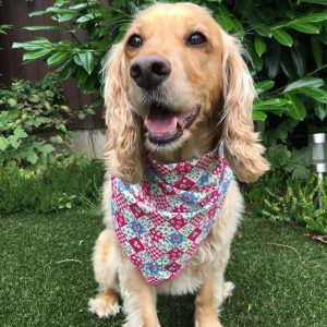 Pink Denim Patchwork Posies Dog Bandana