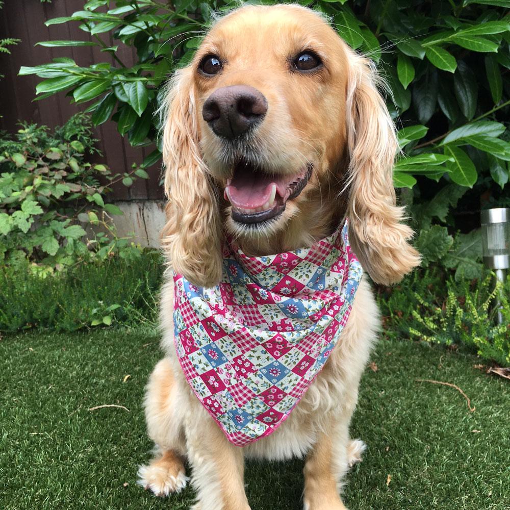 Pink Denim Patchwork Posies Dog Bandana