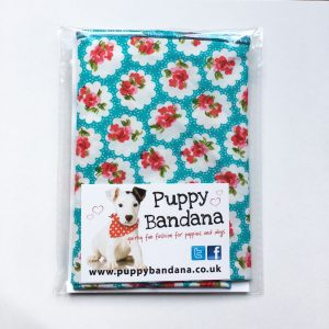 Provence Rose Teal Dog Bandana