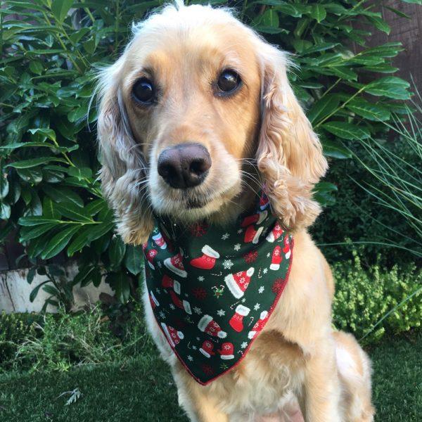All Wrapped Up for Xmas dog bandana from Puppy Bandana