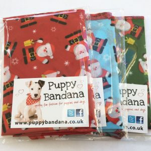 Santa Claus Dog Bandana Offer Pack from Puppy Bandana