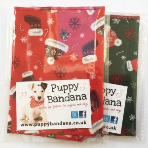 All Wrapped Up Twin Pack of Dog Bandanas from Puppy Bandana