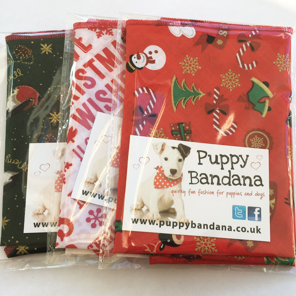 Christmas Dog Bandana Offer Pack from Puppy Bandana