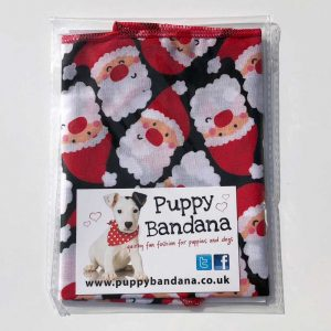Santa Dog Bandana from Puppy Bandana