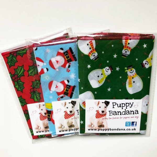 Christmas Dog Bandana Offer Packs