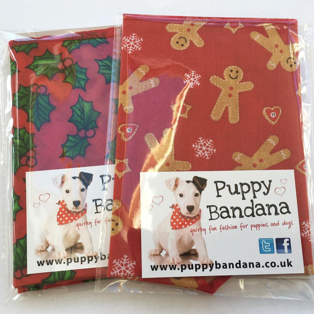 Christmas Dog Bandana Twin Pack from Puppy Bandana