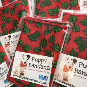 Red Holly Dog Bandana from Puppy Bandanabandanas