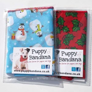 Dog Bandanas Christmas Offers from Puppy Bandana