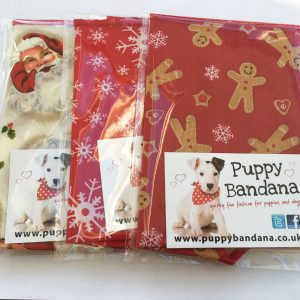 Christmas Special Offer from Puppy Bandana