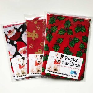 Dog Bandana Offers Christmas from Puppy Bandana