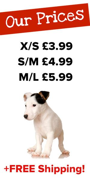 Puppy Bandana Prices